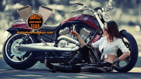 Harley Davidson Motorcycle Gear and More Wallpaper number 11