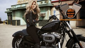 Harley Davidson Motorcycle Gear and More Wallpaper number 41